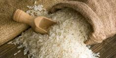 توريد 32 ألف طن أرز محلي لوزارة التموين والمخزون يكفي حتى عام 2021