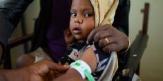 القيود على نقل الإمدادات الإنسانية تؤثر على العمليات الإغاثية في تيجراي